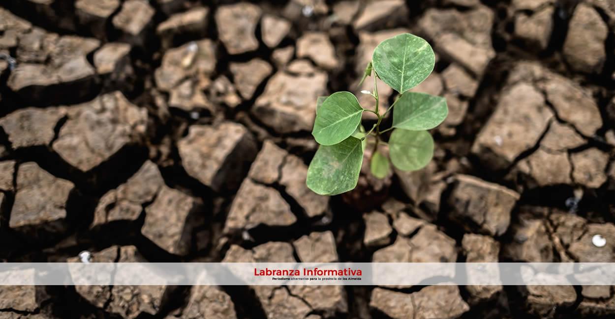 Procuraduría insta a autoridades municipales, distritales y departamentales a formular, con urgencia, sus planes de gestión de cambio climático