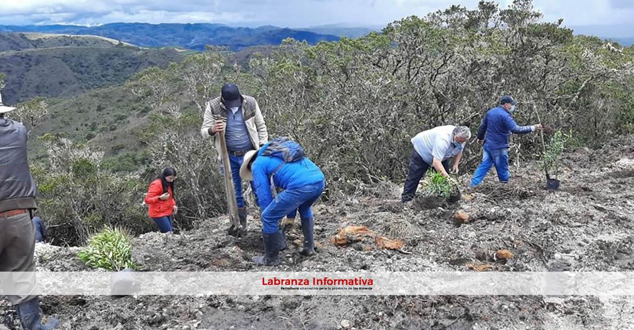 La CAR y curtiembres legalizadas inician reforestación en zona de reserva del nacimiento del río Bogotá